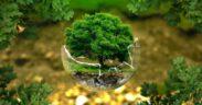 eva_ecologia