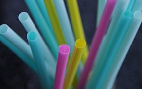 straws-3193715_640